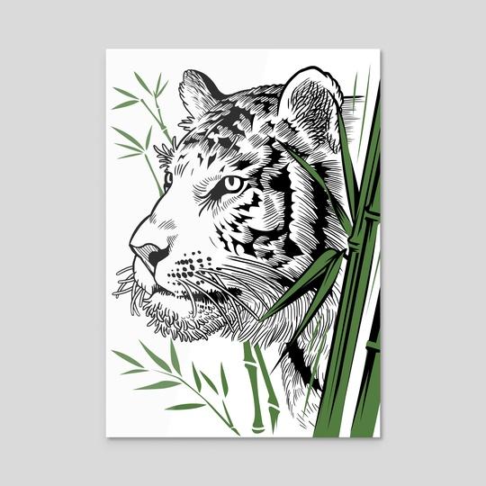 Tiger Bamboo by Alberto Perez