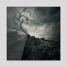 Lonely Tree - Acrylic by Tóth Zoltán