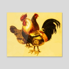 Dorking Couple of Rooster and Hen - Acrylic by Jose Maria Blazquez