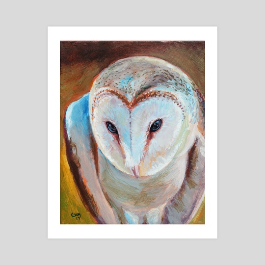 Barn Owl by Guy Gondron