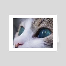 Cat Eyes. - Art Card by Parag Phadnis