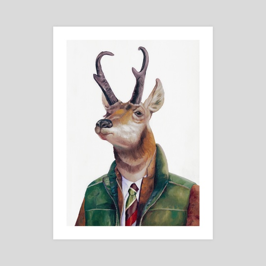 Pronghorn by Animal Crew