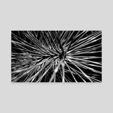 Abstract Plant - Canvas by Aaron Markowitz