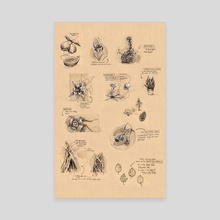 Plant Study Sheet - Canvas by Grace Fong