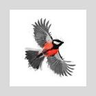 Bird - Art Print by Greg Araszewski