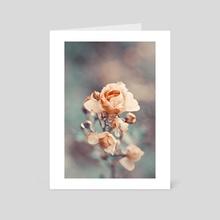 Rose I - Art Card by Angel Yanev