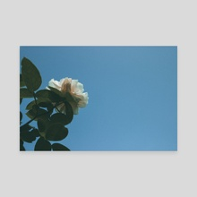 Look Up, See Blue - Canvas by Kristin Elsen