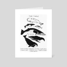 Whales in Greenland - Art Card by Kasper Binzer