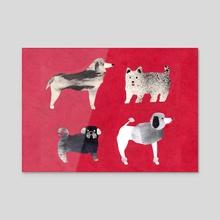 puppies  - Acrylic by Lucia Calfapietra