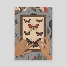 Entomology - Canvas by Shane Tolentino