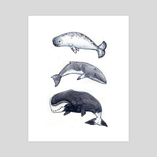 Whale Trio 1 by Angela Cosenzo