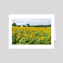 Field of Yellow - Art Card by Alex Tonetti