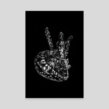 Jellyfish - Canvas by Kassidy Lugo
