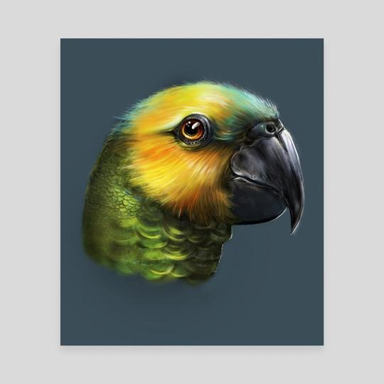 Parrot by Josiah Herman