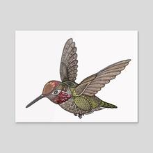 Hummingbird - Acrylic by Zanna Field