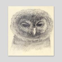 Owly owl - Acrylic by Svetlana Fictionalfriend