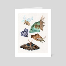 Moth Series I - Art Card by Jessica Bartram