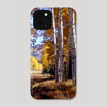 Autumn Paint, Chama New Mexico - Phone Case by Kurt Van Wagner