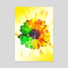 Sunflower - Canvas by Ayomidotun Freeborn