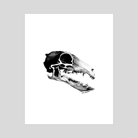 Shrew Skull by Syd Danger