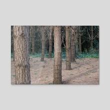Similar - Acrylic by Alexandra Dukardt