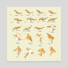 Bird Flying Frames - Canvas by Sarah Oh