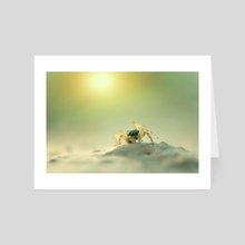 Macro Photography - Art Card by Martin Nittala