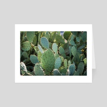 Don't Be a Prick - Art Card by Alex Tonetti