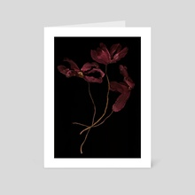 Wilted red flowers - Art Card by Bruce Rolff