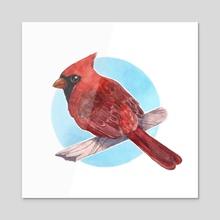 Cardinal - Acrylic by Leann Moffitt
