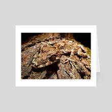 Glare (Northern leaf-tailed gecko) - Art Card by Valdemar  Jørgensen