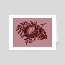 Inktober Day 23- Pomegranate  - Art Card by Emily Oliver