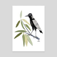 Magpie In A Gum Tree - Canvas by Lesley Fitzpatrick