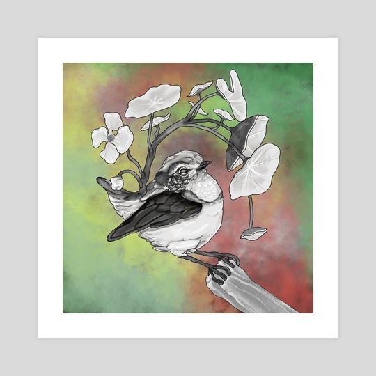Malurus Splendens Tropaeolum Bird by Eloise Rico