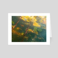 Autumn Under the Pond - Art Card by Ollie Levy