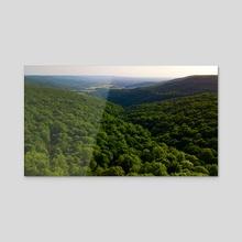 cumberland - Acrylic by Skylar Roberts