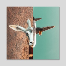 Fight or Flight - Acrylic by Monica Carvalho
