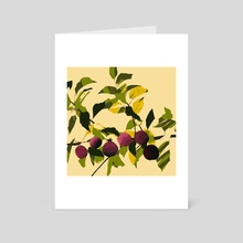 plums (yellow) - Art Card by Olivia D