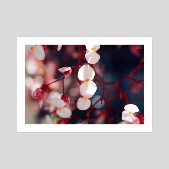 Little Pink Flowers by Brianna Wickham
