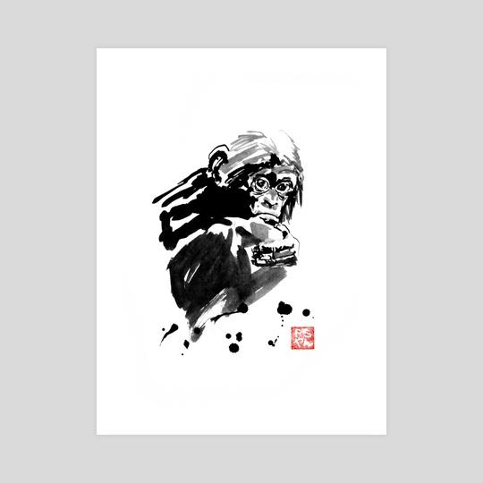 monkey 02 by philippe imbert
