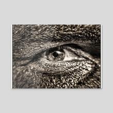 The way Eye see it  - Acrylic by Narasimha Reddy