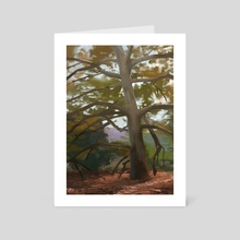 Glorious Sycamore - Art Card by Garrett Kaida