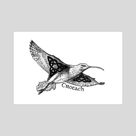 Crotach / Curlew by Ciaraíoch