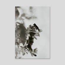 2020 - Acrylic by Jillian Noss