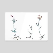 Wild Flowers - Acrylic by Joana Lourenço