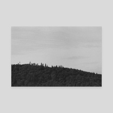 TREELINE #2 - Canvas by Josh Lawson