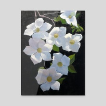 Dogwood Blossoms - Acrylic by Armand Cabrera