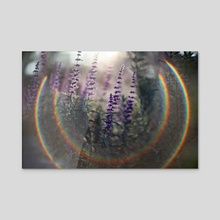 Promised Light - Acrylic by Oriana Sage