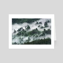Foggy Forest Landscape, Puyuhuapi, Chile - Art Card by Daniel Ferreira Leites