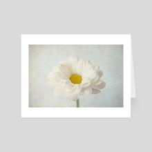 Daisy - Art Card by Paola  Benenati